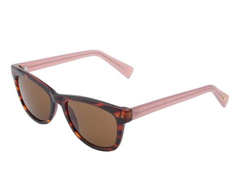 a9b86b33d6 Cole Haan Tortoise Wayfarer Sunglasses