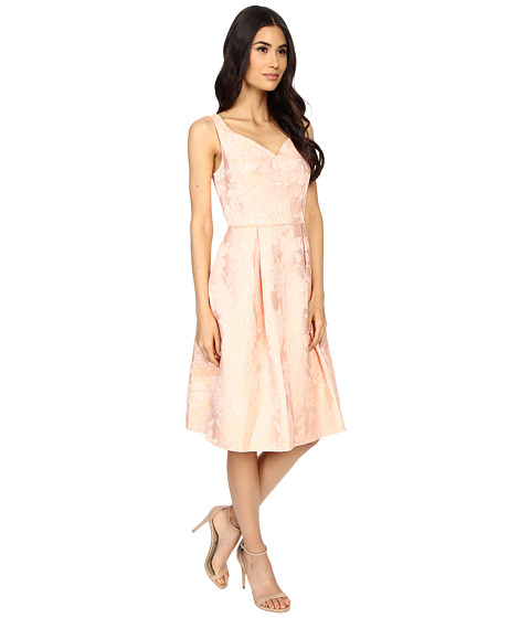 Maggy London Mum Jacquard Fit And Flare Dress Coral 6pm Com
