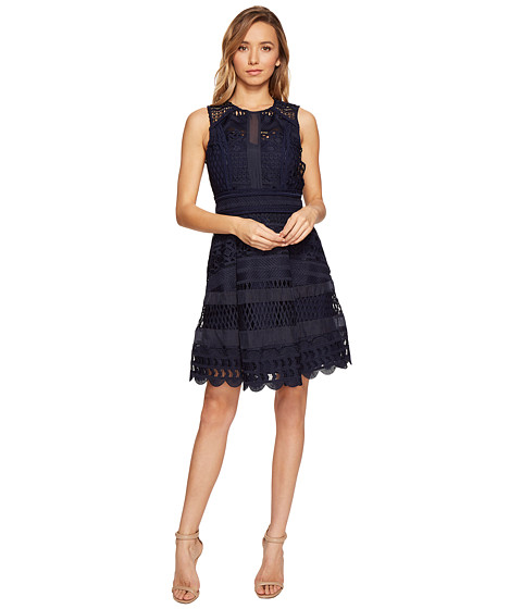 Adelyn Rae Lace Fit And Flare Dress At Zappos Com
